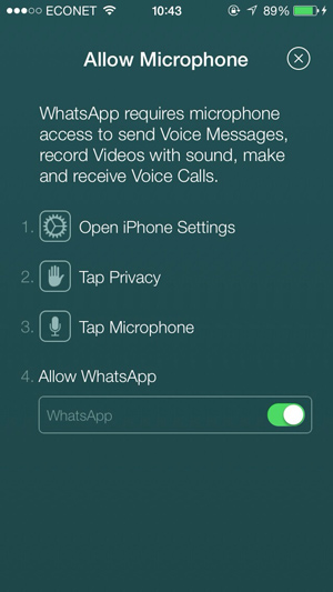 WhatsApp-Microphone-VoIP