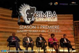 Zimbabwean entrepreneurship, Simba Savannah, Zimbabwean businesses