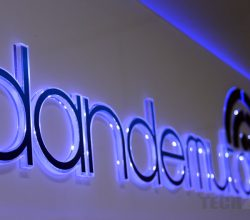 Dandemutande corporate logo