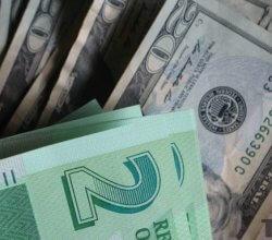 Zimbabwe bond notes and USD