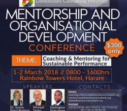 Dimensions Consulting Mentorship and Organisational Development Conference