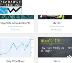 ZSE Website screenshot