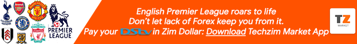 Banner for Techzim Market App which allows for easy DStv subscription payments.