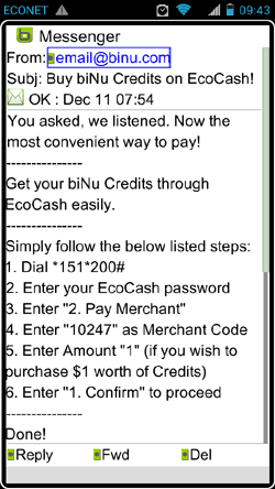 biNu EcoCash Message