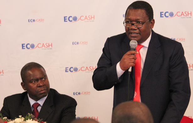 CBZ Bank Executive Director Colin Chimutsa, EcoCash, CBZ partnership