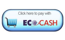 EcoCash internet payments